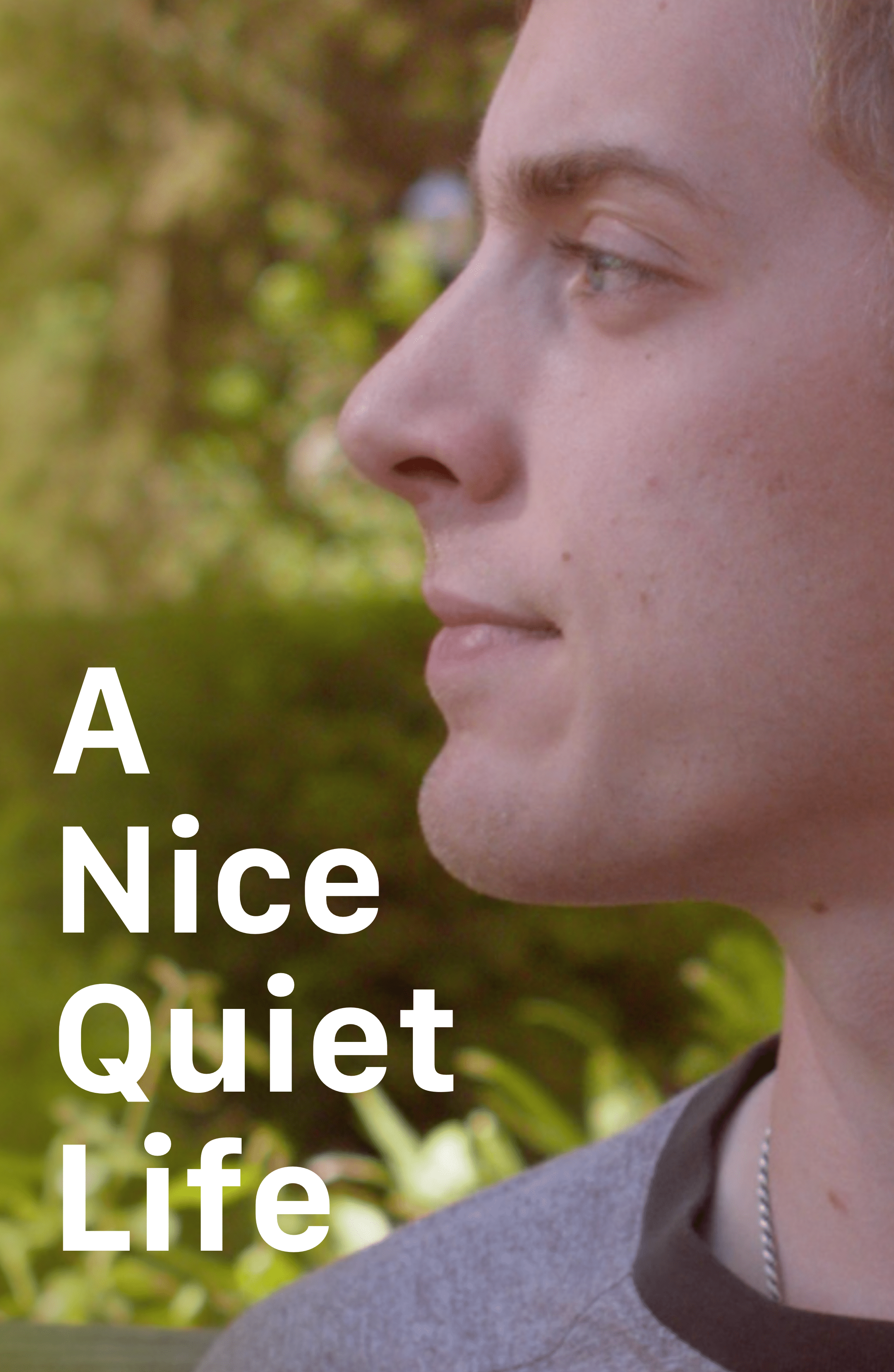 A Nice Quiet Life